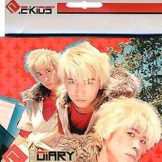 Diary 专辑 E kids