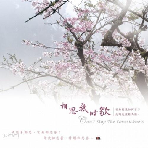 【数码影音】《相思几时歇》书香音乐系列 (八)——王俊雄 - 山夫 - 天地有大美而不言