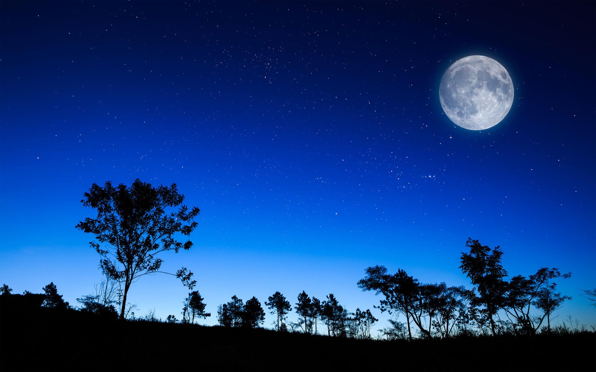 月亮代表我的心