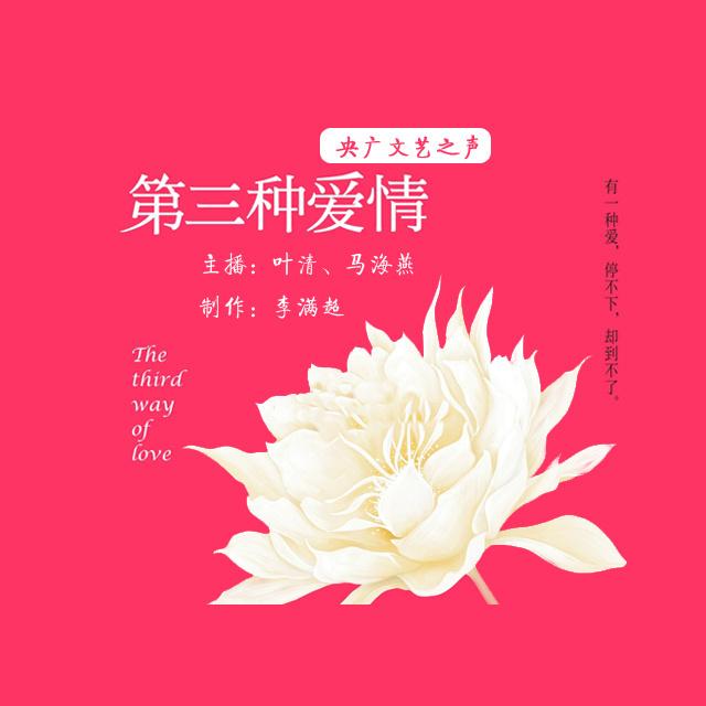 《第三种爱情》小说剧bgm