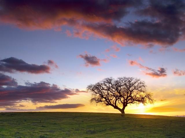 意境 背景图片 孤独/乡村的快乐 乡村的忧伤
