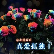 [小说音乐]真爱孤独Ⅰ
