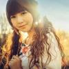 华语音乐精选派之二季