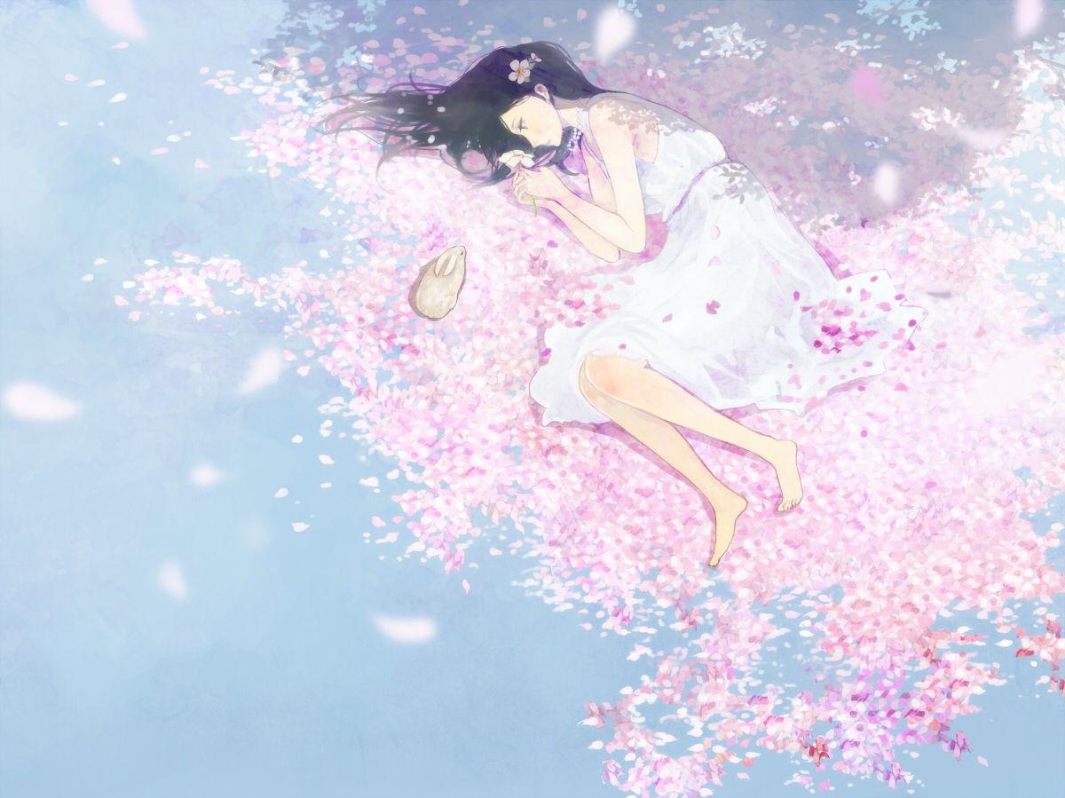 动漫樱花树壁纸