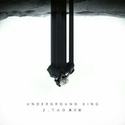 Z.Tao – Underground King – Single (ITUNES PLUS AAC M4A)